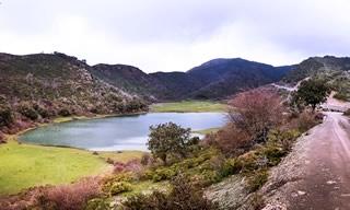Collines, lac et végétation Algérie