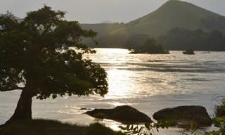 Gabon fleuve arbre et colline