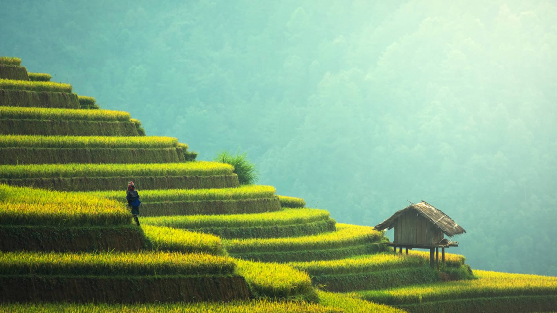 Chine paysage